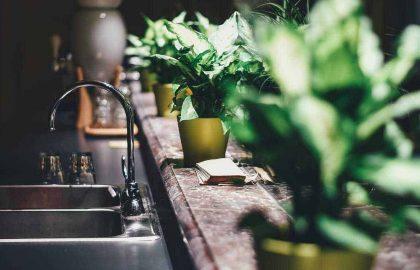 10 כללי חובה לפני רכישה של מפיץ ריח חשמלי