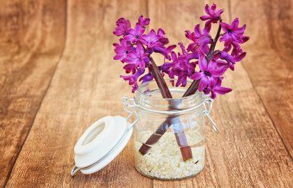 5 טיפים חובה לרכישת מפיצי ריח אוטומטיים מחברה בטוחה – Odora